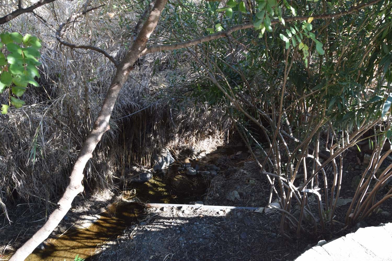 natural_trail_4