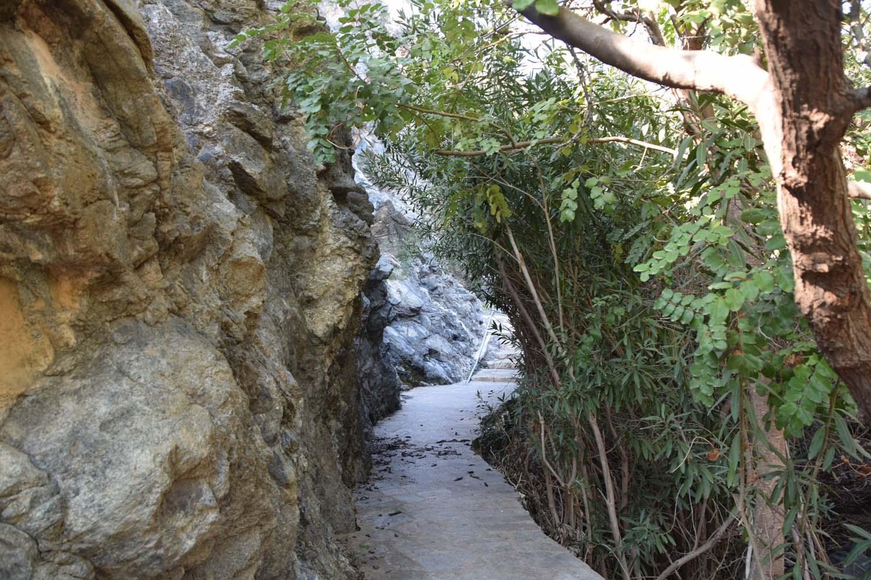 natural_trail_5